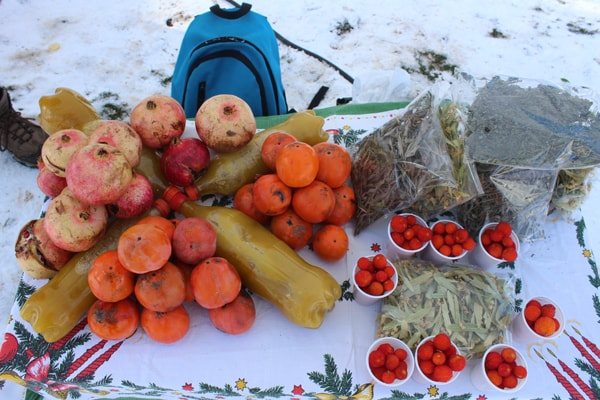 fruits-in-Dajti-Mountain-Tirana